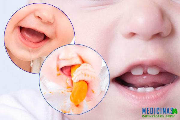 Primeros dientes ¿cuántos y cuando salen los dientes de leche?