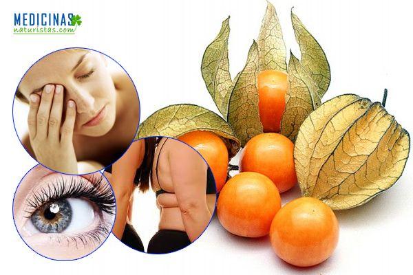 Aguaymanto el fruto que regula la glucosa y elimina el estrés