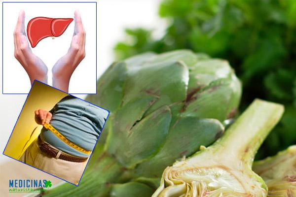Alcachofa propiedades y beneficios para el hígado