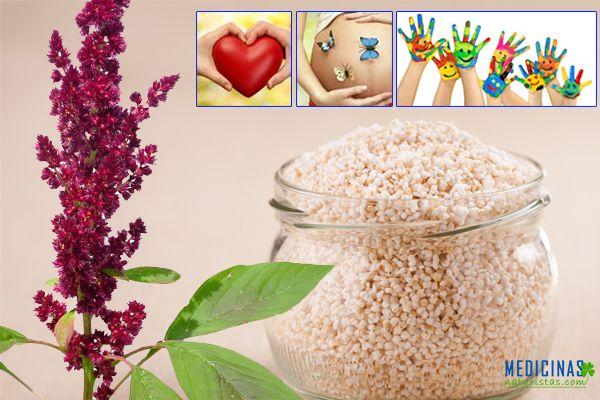 Amaranto inca, alimento energético usado en la nasa