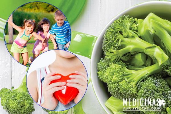 Brócoli beneficios: antioxidante, cuida tu salud y belleza