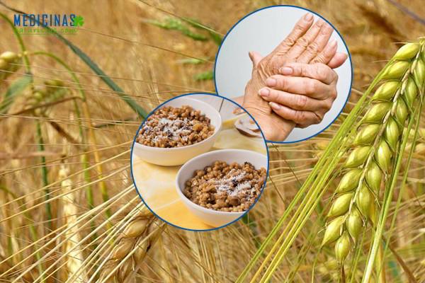 Cebada propiedades y aplicaciones naturistas