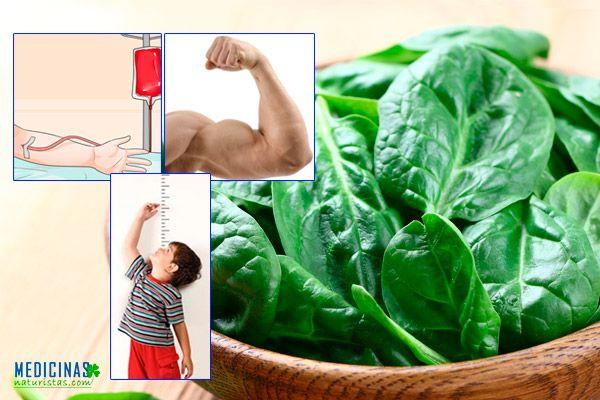 Espinacas valor nutricional para la anemia y cáncer