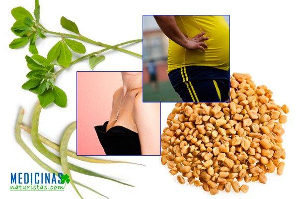 Fenogreco para diabetes, limpiar el hígado y aumentar el busto