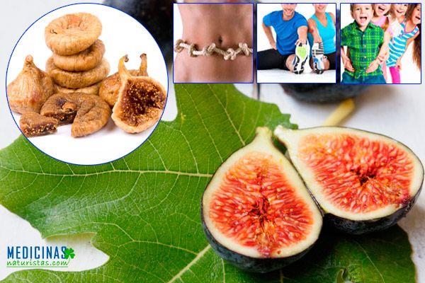 Higuera frutos y hojas para la salud