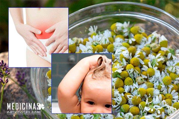 Manzanilla propiedades para aliviar cólicos y aclarar el cabello