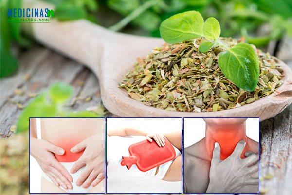 Orégano propiedades para aliviar cólicos menstruales