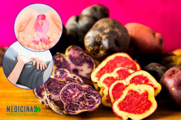 Patatas nativas poder antioxidante, luchan contra el cáncer