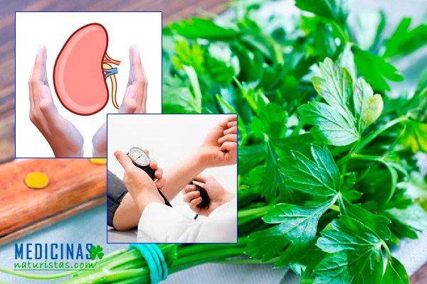 Perejil para bajar la presión arterial y limpiar los riñones