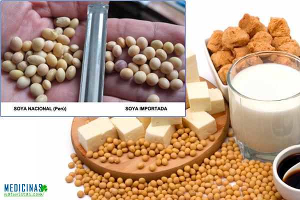 Soja, soya orgánica propiedades medicinales