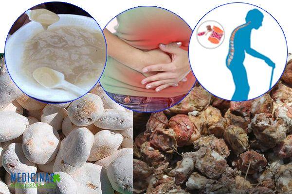 Tocosh, penicilina natural uso y propiedades