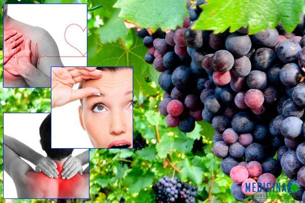 Uva fuente de salud e ingrediente de macerados