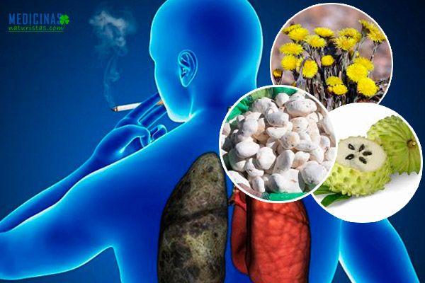 Cáncer de pulmón riegos y alternativas