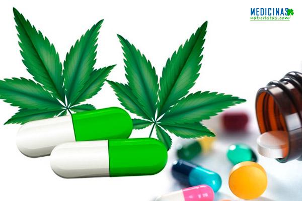 Epilepsia: Norman uso de Cannabis en Perú