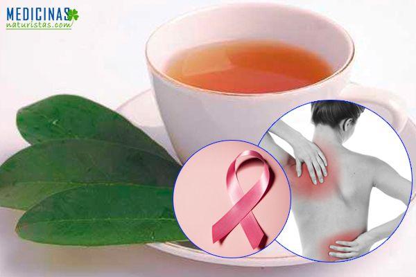 Té de hojas de guanábana, graviola propiedades medicinales