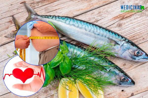 Los mejores pescados ricos en omega 3 para cuidar el corazón