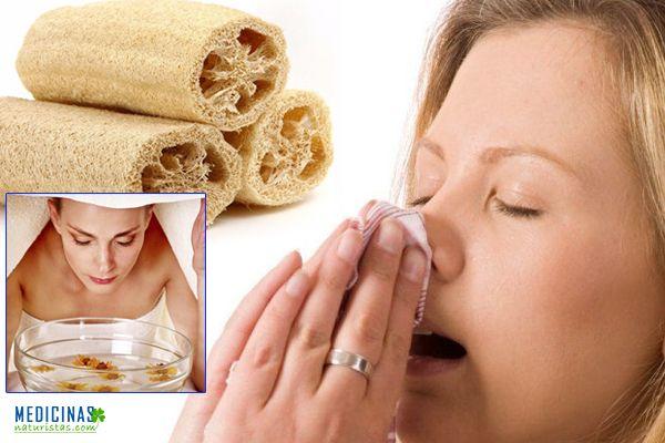 Rinitis y sinusitis tratamiento natural con ESPONJILLA LUFFA