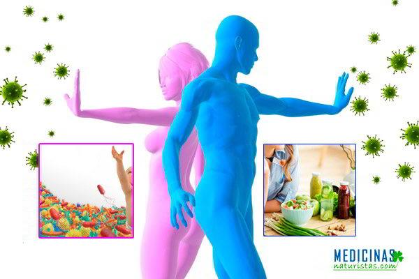 Sistema inmunológico, métodos naturales para fortalecerlo