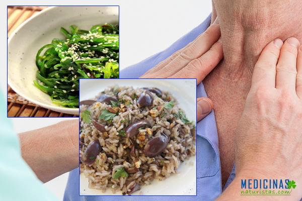 BOCIO, dieta diaria +3 recetas para complementar tu tratamiento