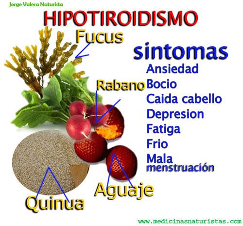 ALIMENTACION NATURAL para tiroidismo, hipotiroidismo, hipertiroidismo